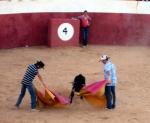 Toros Casassimarro Agosto 2012_7878621370_o